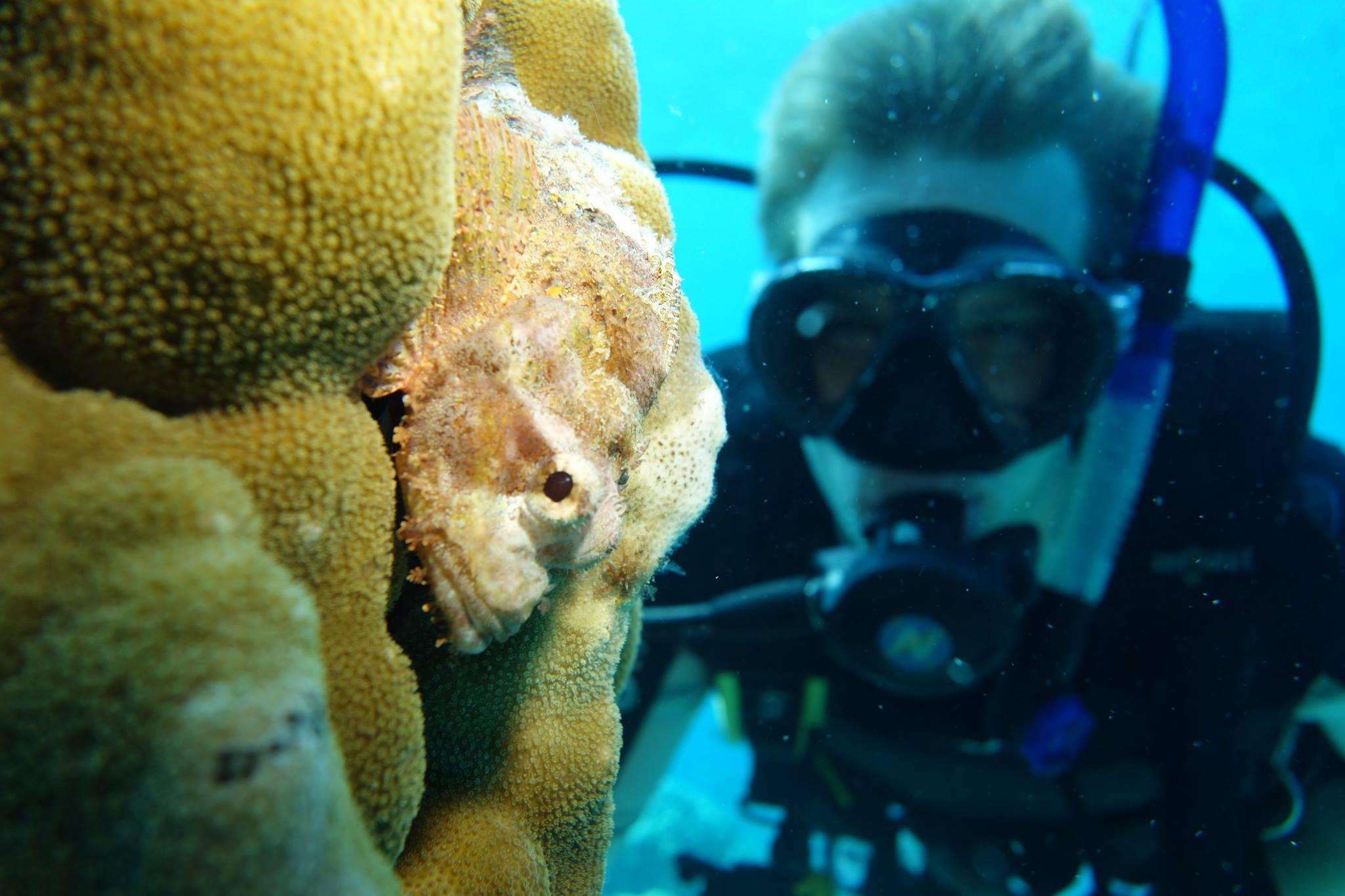 santana-diving-phuket-04